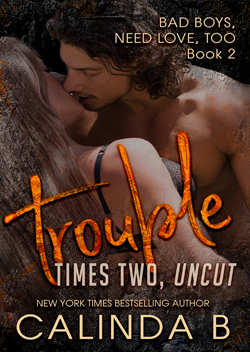 Troubles Times Two by Calinda B